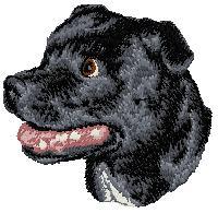 Hundbrodyr Staffordshire bullterrier 2
