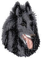 Hundbrodyr Groenendael