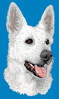 Hundbrodyr Vit herdehund