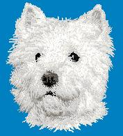 Hundbrodyr West highland white terrier