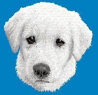 Hundbrodyr Vit herdehund valp