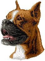 Hundbrodyr Boxer kuperad