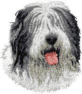 Hundbrodyr Old english sheepdog