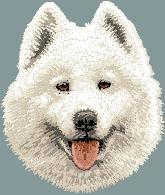 Hundbrodyr Samojed