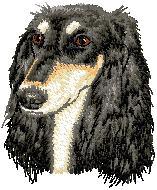 Hundbrodyr Saluki