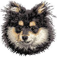 Hundbrodyr Tysk spets