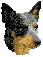 Hundbrodyr australiensk cattle dog