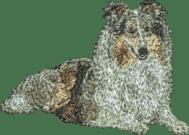 Brodyr Shetland Sheepdog bluemerle liggande