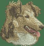 Brodyr Shetland Sheepdog sobel huvud