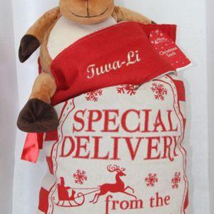 """Julsäck med personlig brodyr och tryckt text """"Special Delivery from the Norhtpole"""""""