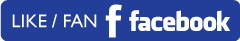 social-facebook-big