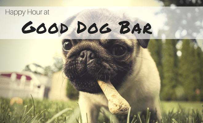 happy hour good dog bar