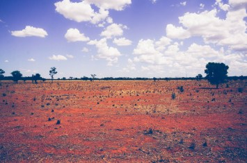 Scrub country west of the Bogan River