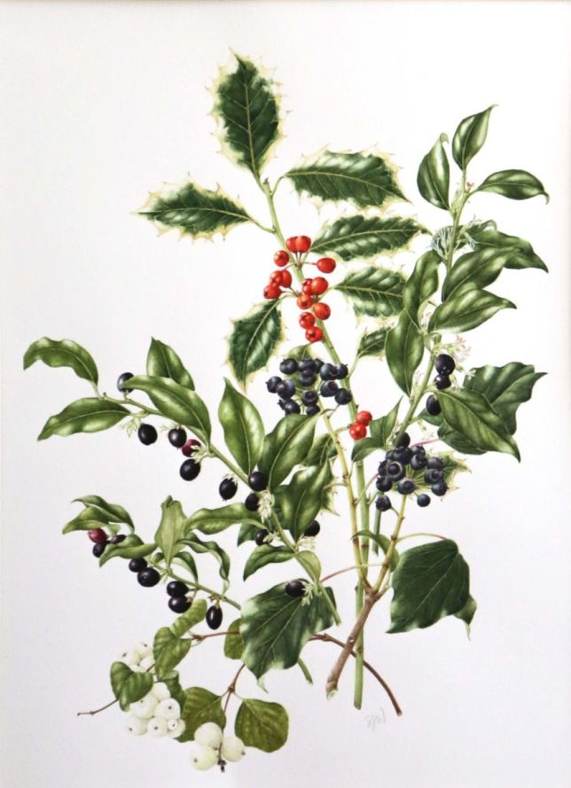 winter berries2
