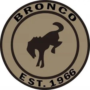 Bronco Aftermarket Vintage Style Tire Cover