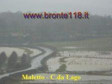 malt10032012 16