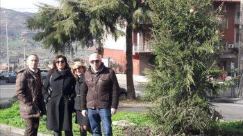 """BRONTE: GLI ALBERI DI NATALE RIPIANTATI IN ALCUNI ANGOLI """"STRATEGICI"""""""