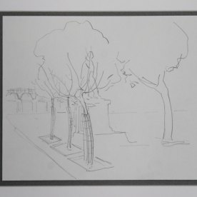 Nice. Dormant young trees. Drawing