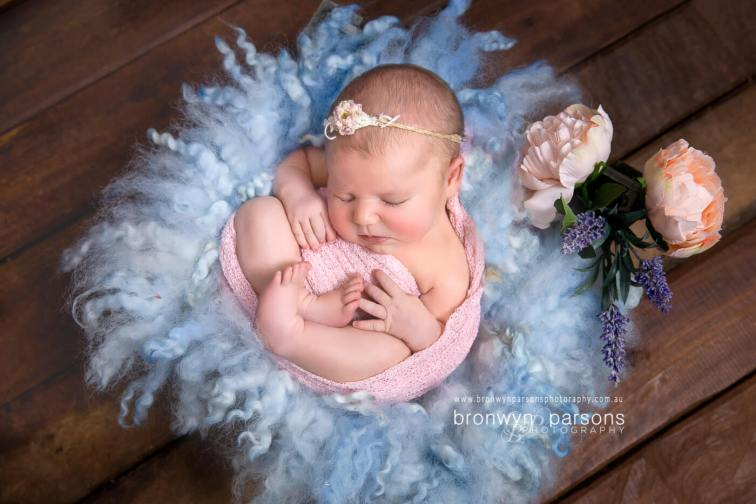 Canberra Newborn Photography