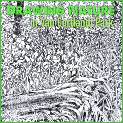 Fall in Van Cortlandt Park