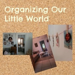 Organizing Our Little World: The Beginning.