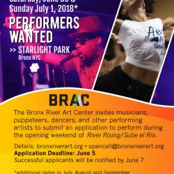 Performers Wanted for Outdoor Celebration w/BRAC