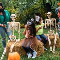 BOO at the ZOO Returns to the Bronx Zoo