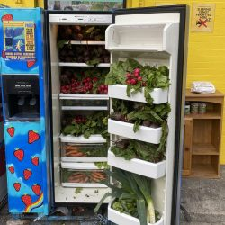 South Bronx 6th Grade Teacher Starts Mott Haven Community Refrigerator
