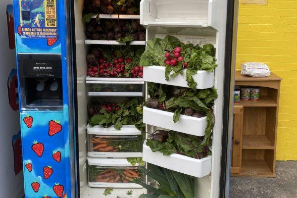 South Bronx 6th Grade Teacher Starts Mott Haven Community Refrigerator