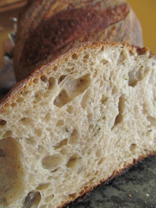 Home-backed sourdough's open, delicious crumb