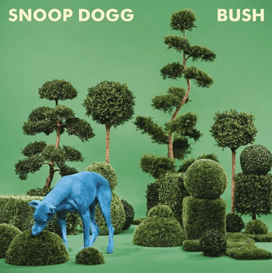 Bush Album Cover-1