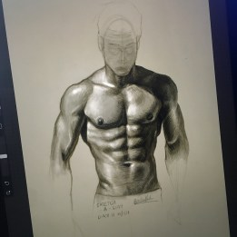Quick torso anatomy study sketch based on photo ref
