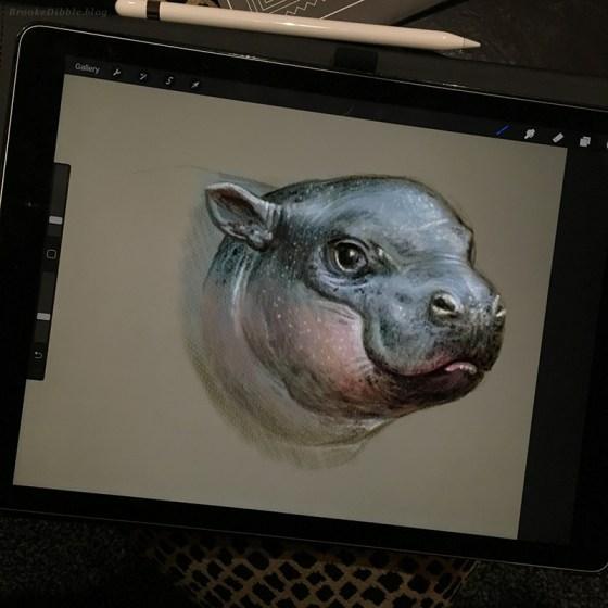Hippo study sketch on iPad Pro