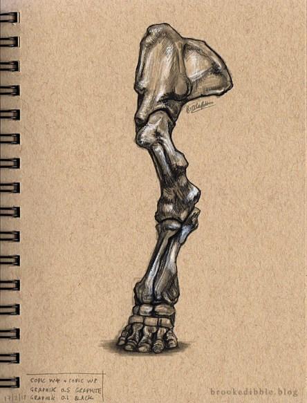 Quick study pen sketches