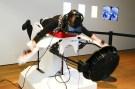 virtual_reality_bird_simulator