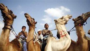 egypt_camels001_16x9