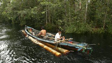 indonesia_logging001_16x9
