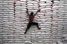 rice_warehouse001