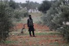 A member of al Qaeda's Nusra Front carries his weapon as he stands in an olive tree field, near villages which the Nusra Front said they have seized control of from Syrian rebel factions, in the southern countryside of Idlib, December 2, 2014. Picture taken December 2, 2014.
