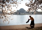 A mother swings her young son as they visit the cherry blossoms along the tidal basin in Washington April 2, 2007.  REUTERS/Jason Reed   (UNITED STATES) - GM1DUYKXVVAA