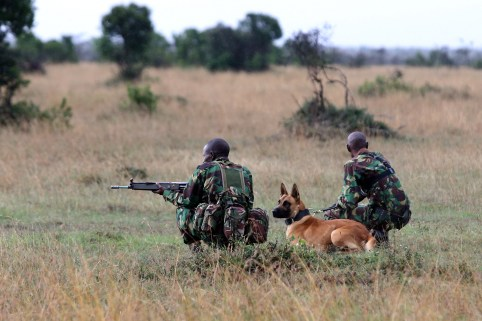 A special unit of wildlife rangers demonstrate an anti-poaching exercise ahead of the Giants Club Summit of African leaders and others on tackling poaching of elephants and rhinos, Ol Pejeta conservancy near the town of Nanyuki, Laikipia County, Kenya Photographer/Date: Siegfried Modola/April 2016