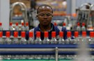 An employee inspects Kenya Cane spirit bottles on a conveyor belt at the East African Breweries Limited factory in Ruaraka factory in Nairobi, Kenya April 6, 2018. Picture taken April 6, 2018. REUTERS/Thomas Mukoya - RC18A50BF7B0
