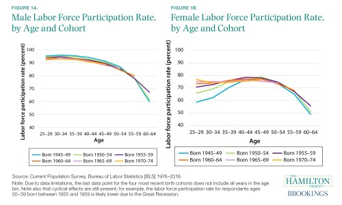 Male and Female LFPR by age and cohort