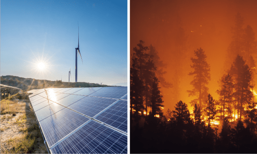 Solar panels & forest fires
