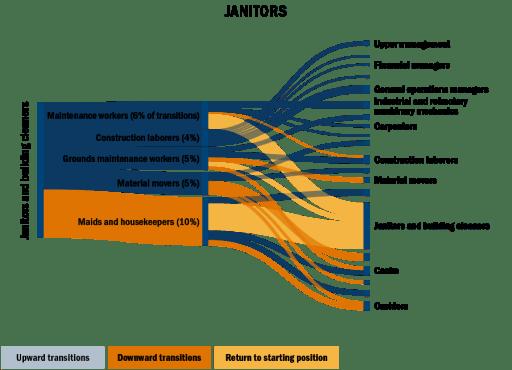 Sankey chart: janitor