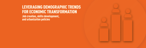 Foresight Africa 2020 Chapter 3 banner