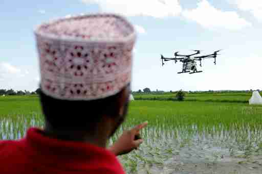 Drone pilot watches a customized DJI Agras MG-1S drone fly over a rice field during a training flight being part of a test in using drone technology in the fight against malaria, near Zanzibar City, on the island of Zanzibar, Tanzania, October 31, 2019. Picture taken October 31, 2019. REUTERS/Baz Ratner - RC15BBAB1290