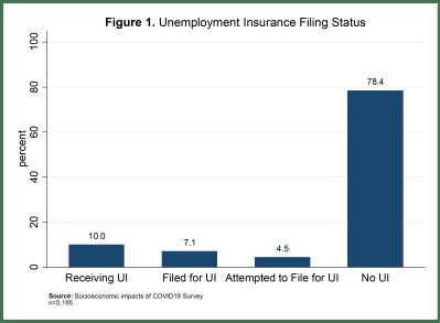 Unemployment insurance filing status