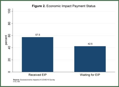 Economic Impact Payment status