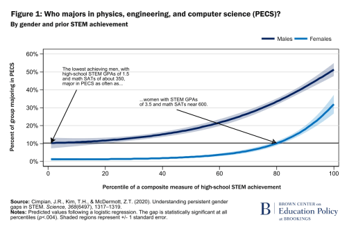 Fig1 - Who majors in physics, engineering, and compsci